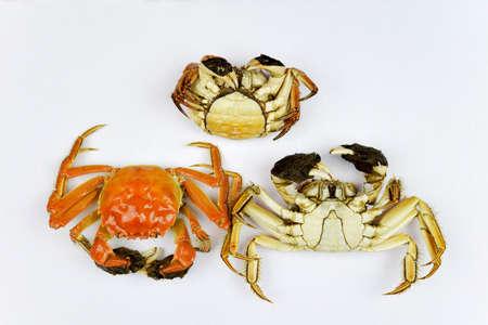 aquatic products: crabs Stock Photo