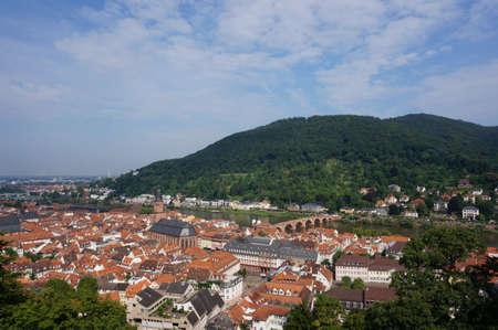 bird's eye view: Birds eye view of Heidelberg panorama