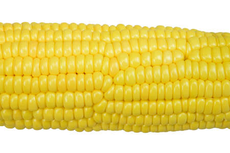 features: Maize features