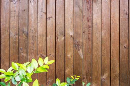 wall texture: Plank Wall texture
