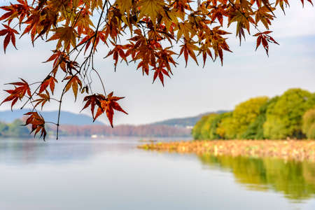 Hangzhou, West Lake, autumn scenery