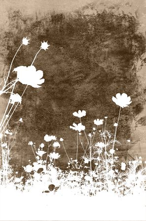 flower abstract textures and backgrounds Stock Photo - 1000189