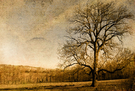 old-fashioned landscape Stock Photo - 1518302