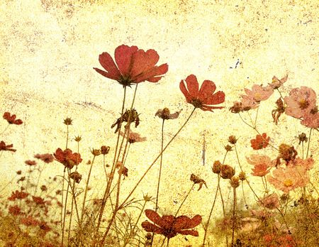 painterly: old-fashioned flower