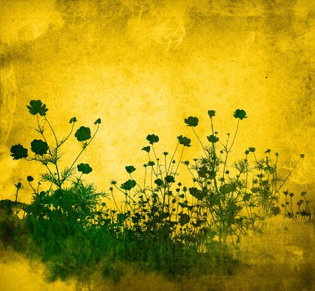 flower abstract textures and backgrounds photo