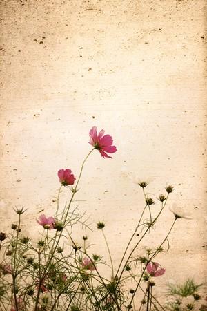 texturas de papel de flor antiguo - fondo perfecto con espacio para texto o imagen