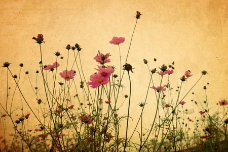 Vintage bloem papier achtergrond Stockfoto