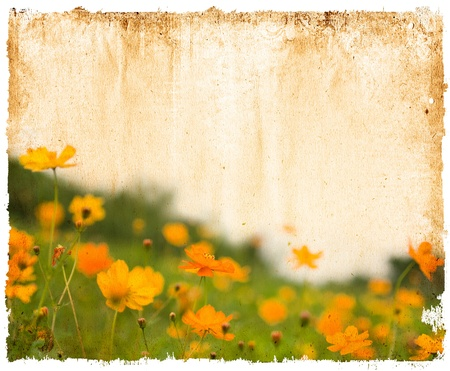 arty: old shabby paper textures - perfect background with space for text or image  Stock Photo