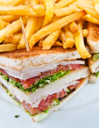sandwiches: Sandwich with chicken, cheese and golden French fries potatoes