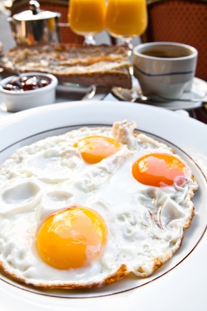Prepared Egg - Isolated prepared egg under the sun Stock Photo - 10365636