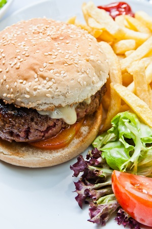 Cheese burger - American cheese burger with fresh salad Stock Photo - 11317894