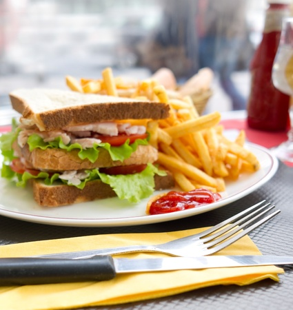 Sandwich with chicken, cheese and golden French fries potatoes Stock Photo - 12626275