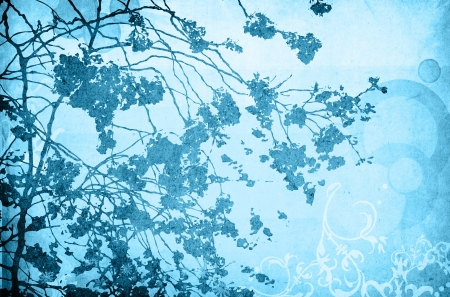 Multicolor foliage background with space for text or image photo