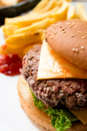 french fries: Cheese burger - American cheese burger with fresh salad