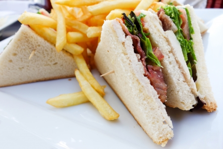 Sandwich with chicken, cheese and golden French fries potatoes Stock Photo - 15544859