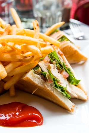 Sandwich with bacon - chicken, cheese and lettuce Stock Photo - 17212528