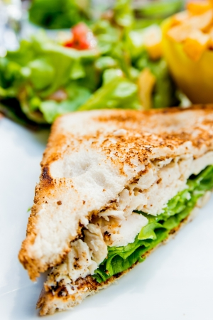 Sandwich with chicken, cheese and golden French fries potatoes Stock Photo - 17364490