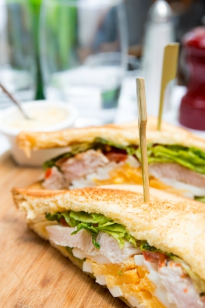 Sandwich with chicken, cheese and golden French fries potatoes Stock Photo - 17364464
