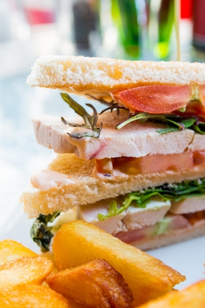 Sandwich de pollo con patatas, queso y oro French fries photo