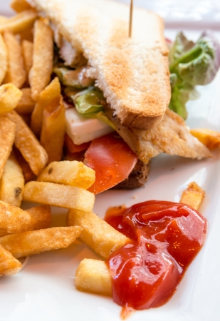 Sandwich with chicken, cheese and golden French fries potatoes Stock Photo - 19462901