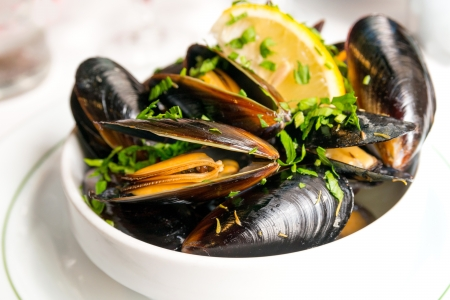 Mussel with white wine sauce on table Stock Photo - 19465904