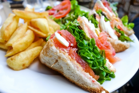 Sandwich with Salmon, cheese and golden French fries potatoes photo