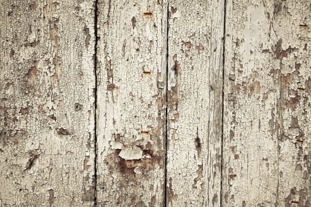 photo of the texture of wood background photo