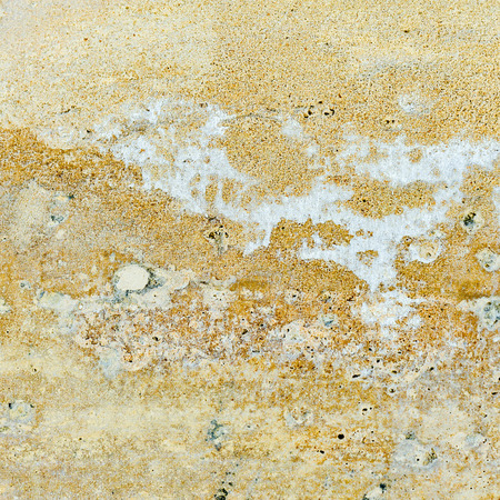 wall textures: wall textures and background