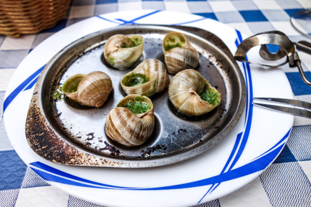 gastronomic: traditional snails with garlic butter as gourmet food