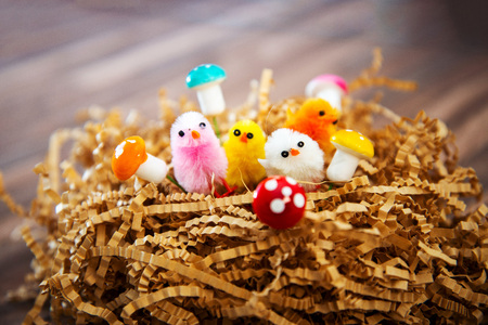 easter chick isolated for your easter design