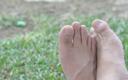 barefooted: Light step barefoot on the soft summer grass health barefoot walking