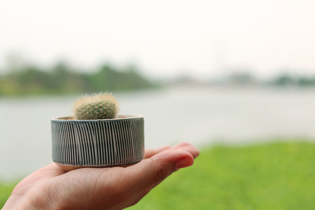 cactus pot on hand with blurred river background