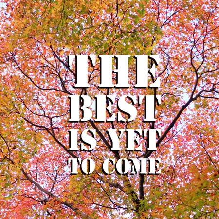 Inspirational motivational quote the best is yet to come on autumn leaves background.