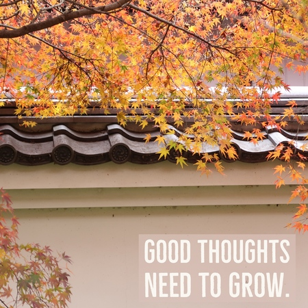 Inspirational motivational quote good thoughts need to grow Фото со стока