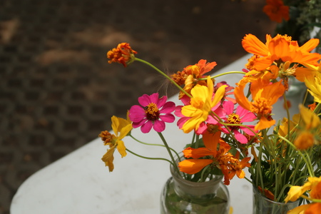 beautiful colorful flowers  in vase outdoor garden. Фото со стока