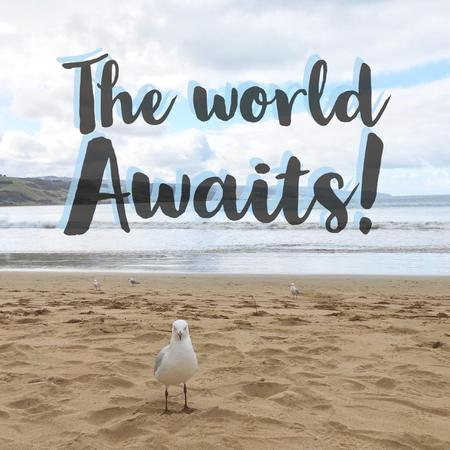Inspirational motivational quote The world awaits with seagull on sandy beach background.