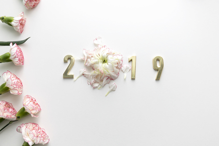 Flat lay of words 2019 with carnation flowers and petals on white background. Top view.