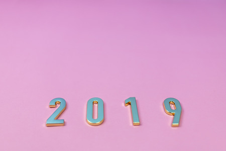 Flat lay of words 2019 on pink pastel background. Top view.