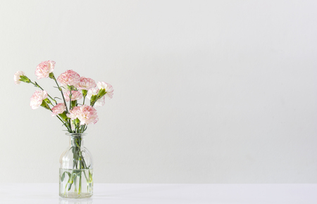 pink and white carnation flowers in glass vase on white table in white room with copy space.