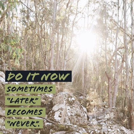 Inspirational motivational quote Do it now. Sometimes later becomes never. with mountain and sun background.