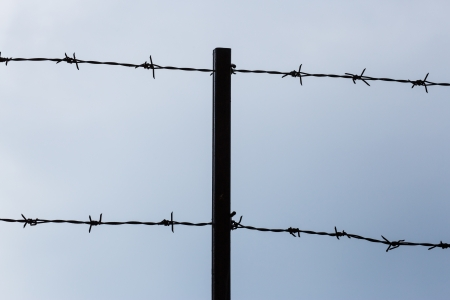 Barbed wire fence Stock Photo - 16464829