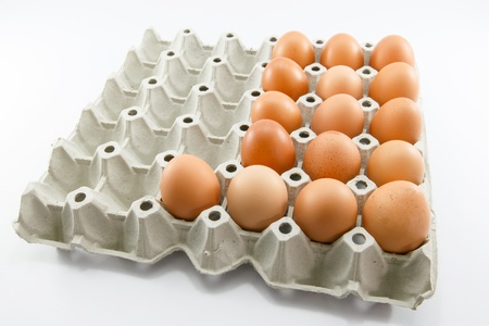 harmless: eggs of a hen in harmless, cardboard packing on a white background