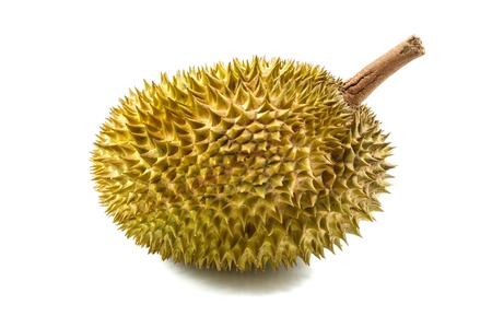 durian isolated on white background Stock Photo - 17440110