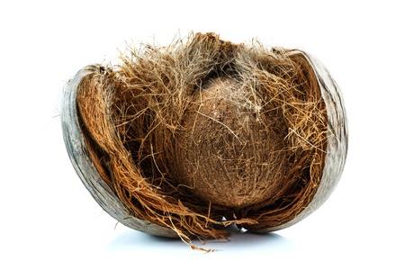 Coco pelado isolado no fundo branco Banco de Imagens