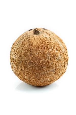 coco isolado no fundo branco Banco de Imagens