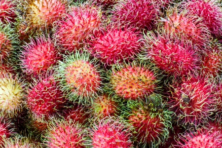 rambutan delicious thai fruit photo