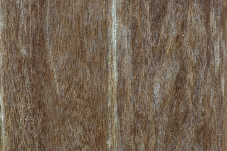 Wood Background Stock Photo - 17476878