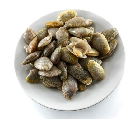 Shellfish isolated on white background