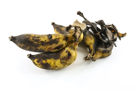 Overripe bananas in front of a white background photo
