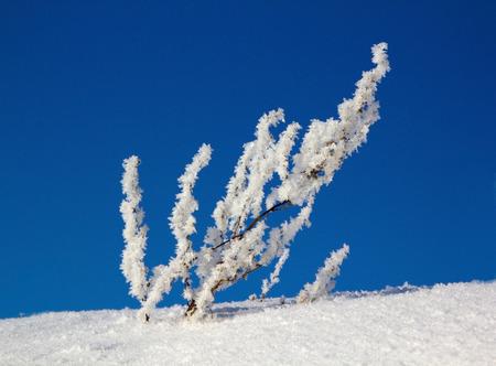 drifts: winter, snow drifts Stock Photo